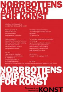 Norrbottens Ambassad För Konst 2015